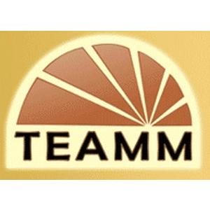 34_teamm